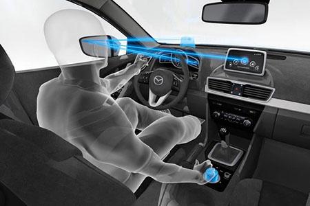 Driver Fatigue Monitor (DFM) System